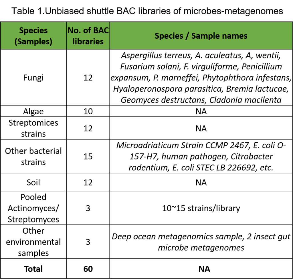 BAC Library table 2