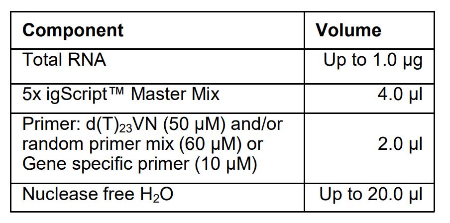 cdna Synthesis Protocol