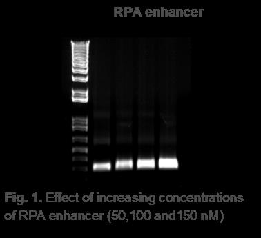Recombinase Polymerase Amplification Enahancer Effectiveness