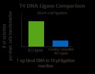 T4 DNA Ligase