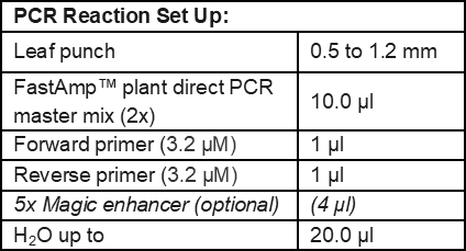 Plant Direct PCR Reaction Setup