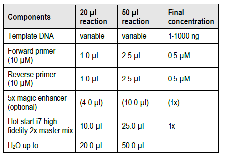 Hot-Start-i7-High-Fidelity-DNA-Polymerase-2x-Master-Mix-Reacton-Set-up