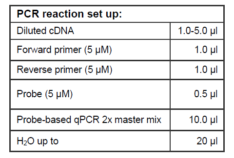 PCR REaction Set Up Synthesis Probe Based RT-qpcr