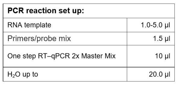 PCR Reaction Set Up Covid-19 RT-qPCR Probe based