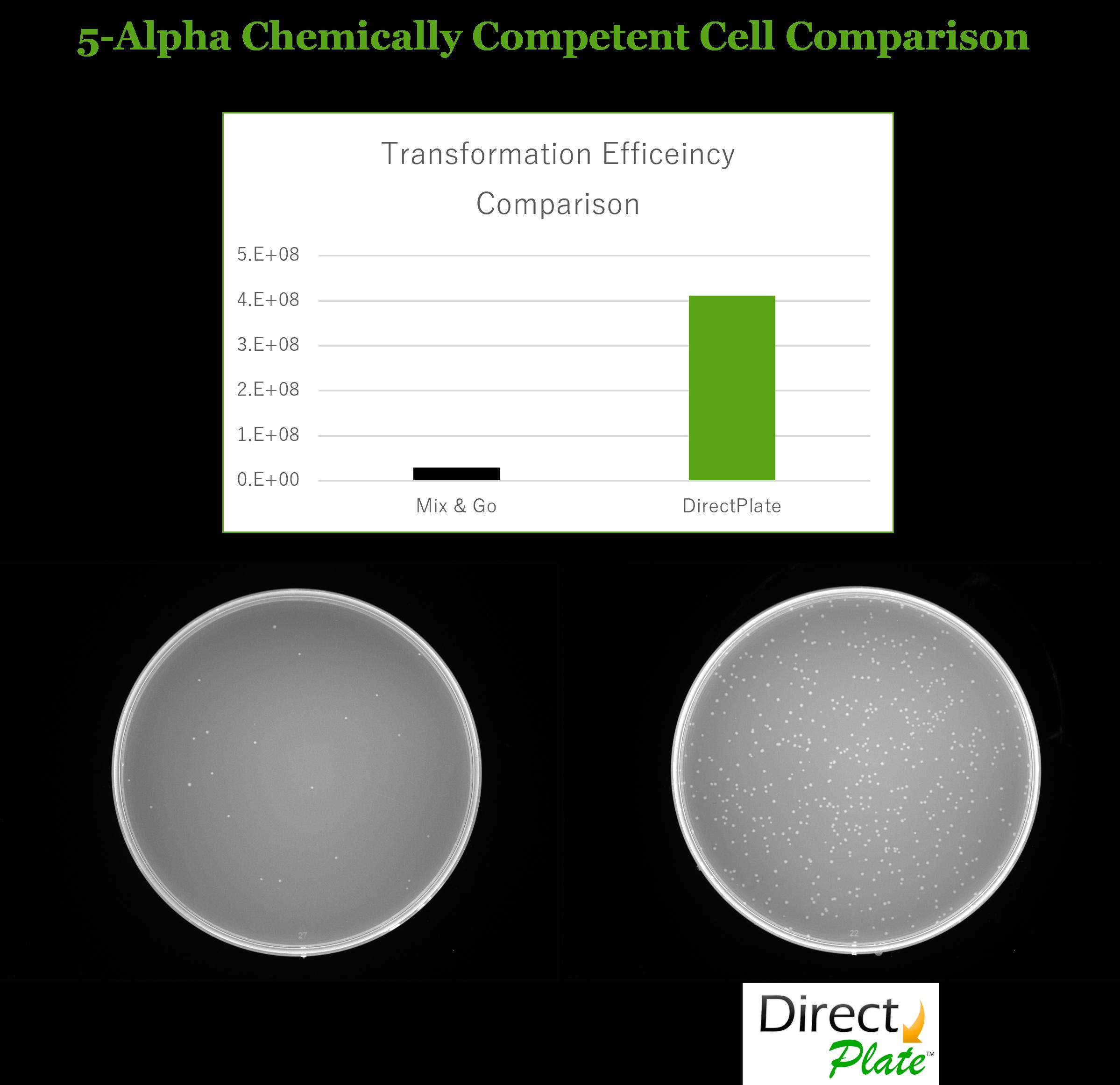 Direct Plate vs ZYMO 5-alpha Competent Cell Comparison