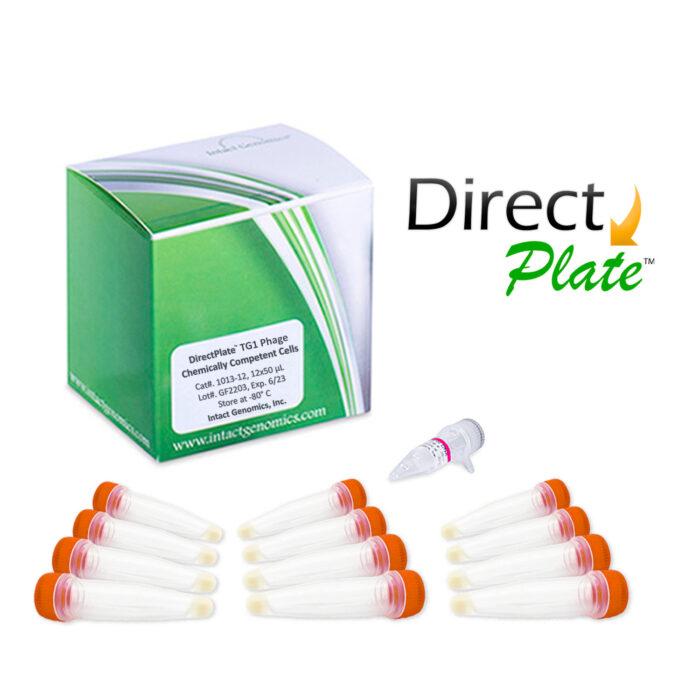 Direct Plate TG1 Phage Display