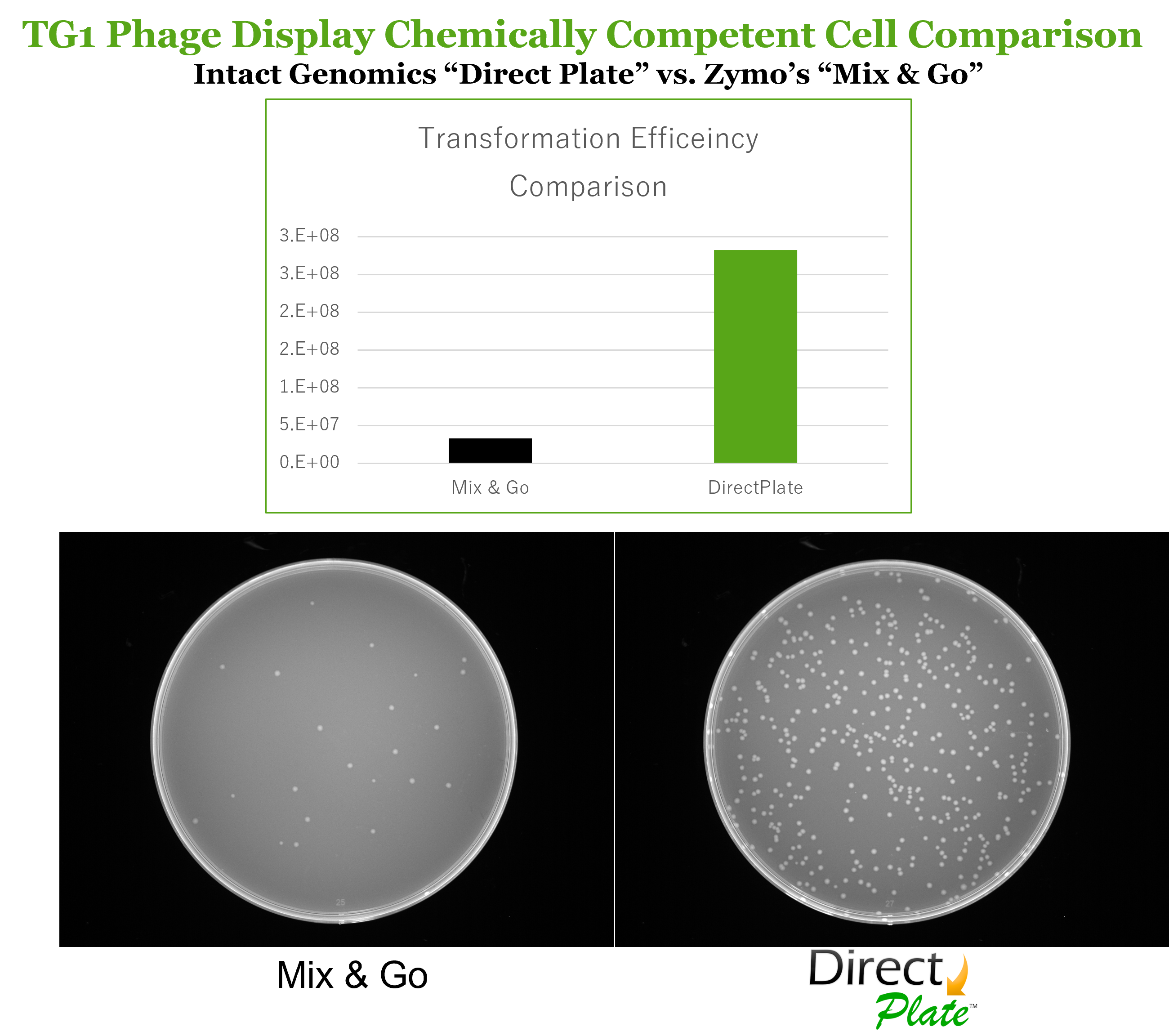 Direct Plate vs ZYMO TG-1 Phage Display Competent Cell Comparison